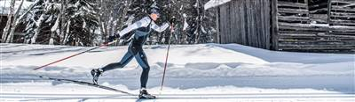 Cross-country skier on a cross-country trail